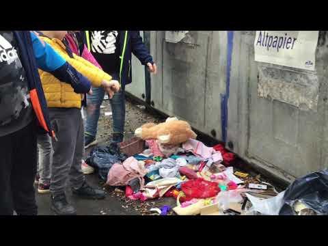 FSE On-Line Herbstferienaktion Umweltdetektive
